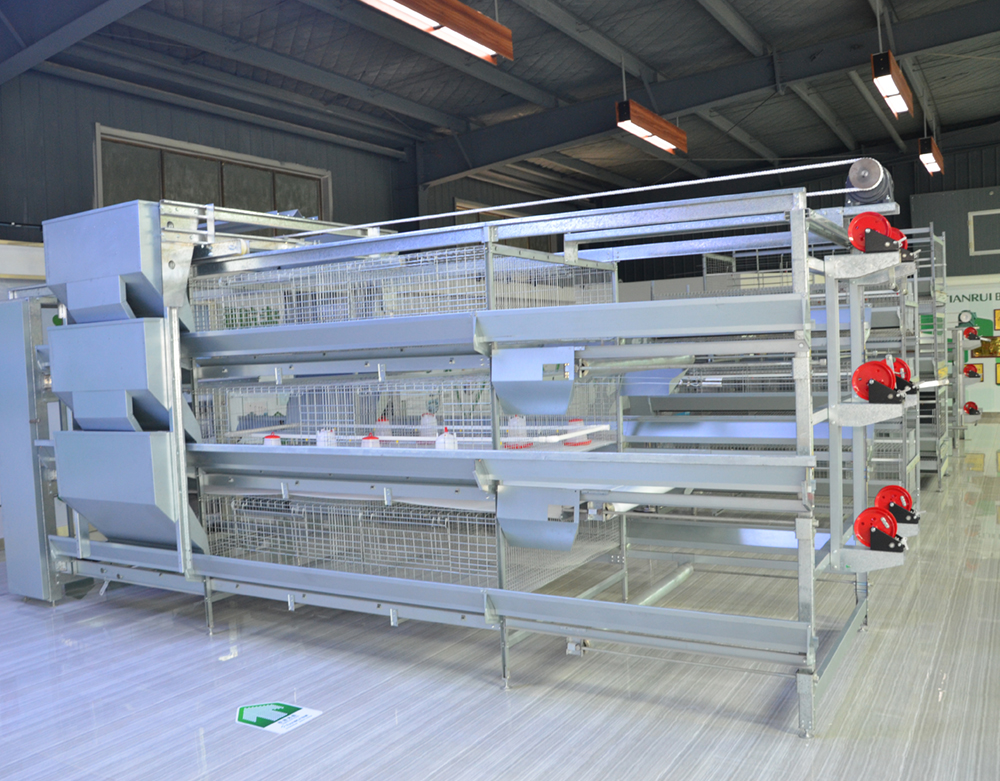 Manual-Bird-harvesting-Broiler-Chicken-Cage