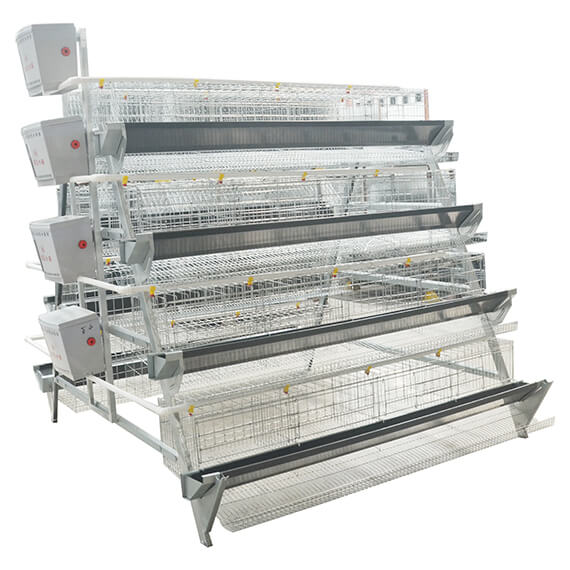 a-type-layer-cage-2