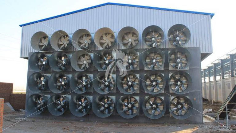 exhaust-fan-cooling-pad-works-tianrui-poultry-farm